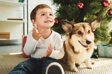 Happy Boy And Dog Sitting Unde...
