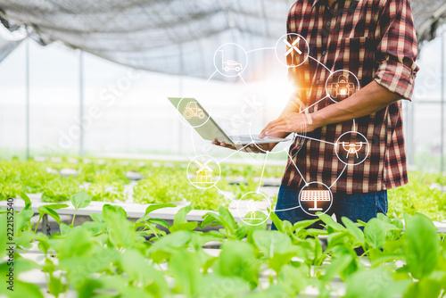 Fototapeta Concept of modern smart farming. obraz