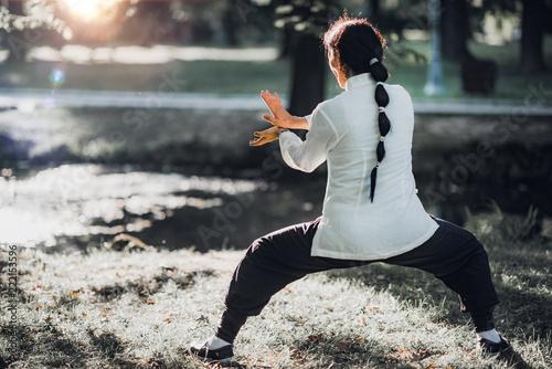 Photo Stands Martial arts Tai Chi Quan
