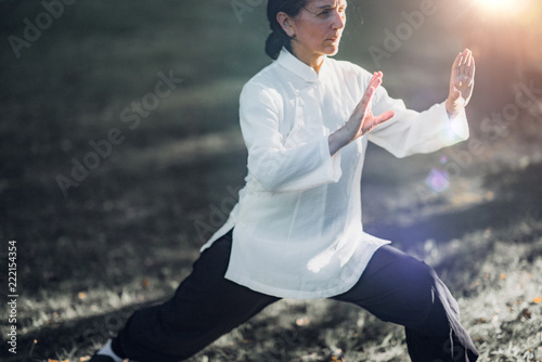 Photo Stands Martial arts Tai Chi Quan