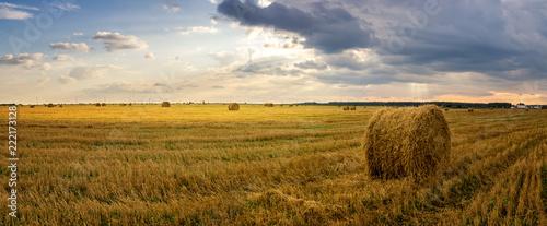Fotomural  осенний пейзаж в поле с сеном вечером, Россия, Урал, сентябрь