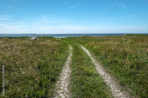 Foto op Aluminium Blauw simple gravel country road in summer in forest