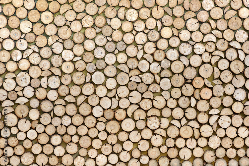 Fototapety, obrazy: Wood texture background made of stacked wood logs