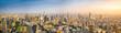 Beautiful Bangkok city, bird eye view on modern new buildings
