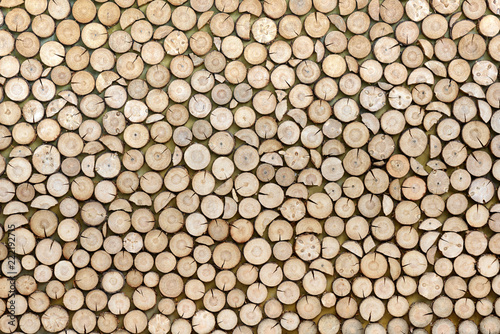 Wood texture background made of stacked wood logs Tableau sur Toile