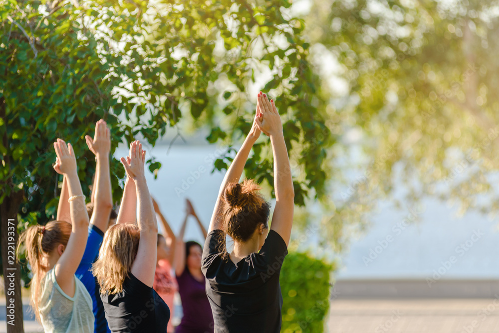Fototapeta Group of young people practicing yoga outside in park