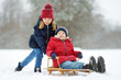 Two funny little girls having fun with a sleigh in beautiful winter park. Cute children playing in a snow.