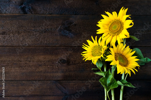 In de dag Zonnebloem Bright yellow sunflowers on natural rustic texture wooden board. Mockup banner with flowers of the sunflower on dark background with copy space. Autumn harvest, abundance, natural products concept