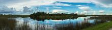 Secret Island In The Wetlands Panorama