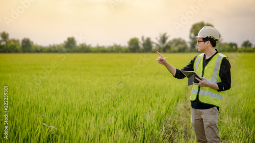 Photo Young Asian male agronomist or agricultural engineer observing green rice field with digital tablet and pen for the agronomy research