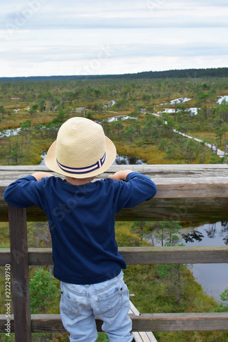 Little boy in straw hat looking forward horizon and beautiful moorland landscape with pine trees and ponds in kemeri national park Latvia summer 2018. Children educational outdoor activities concept.