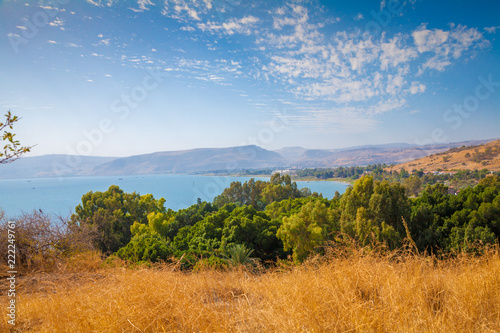 Seashore in Tabgha, Sea of Galilee, beautiful nature of Israel Canvas Print