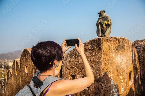 Photo Tourists photograph the monkey Langur