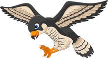 Falcon Cartoon Flying