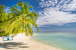 Idyllic tropical beach landscape. Palm tree and swing over blue sea. Tranquil exotic nature background
