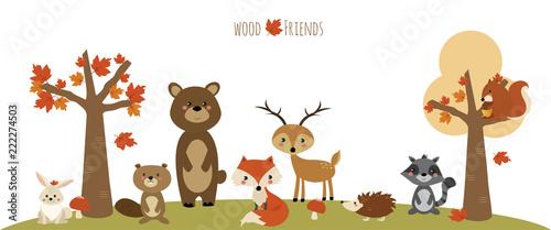 Fotografie, Obraz  amici del bosco