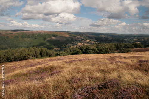 Deurstickers Zwart Highlights from Peak District