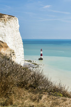 Beachy Head Lighthouse Viewed From The Chalk Headlands In East Sussex, England Called Beachy Head. Lies Very Close To Eastbourne And Immediately East Of The Seven Sisters County Park.