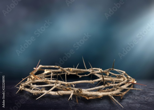 Valokuvatapetti Crown of Thorns
