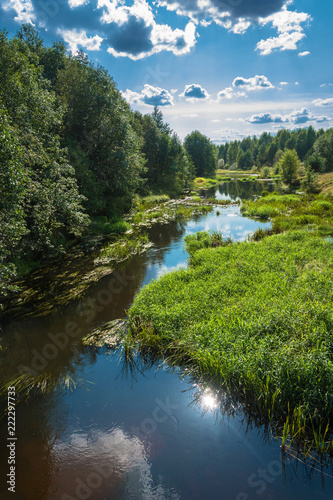 Summer landscape with a small river.
