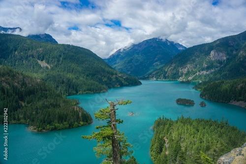 Fotografie, Obraz  Summer day in the Cascade Mountains