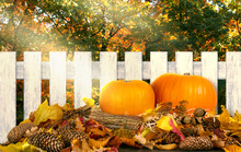 Autumn Festive Background With...