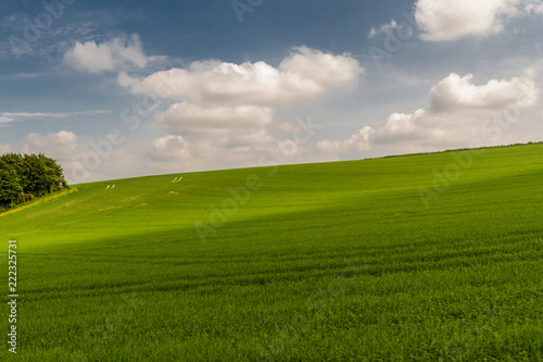Spoed Foto op Canvas Weide, Moeras English countryside green fields.