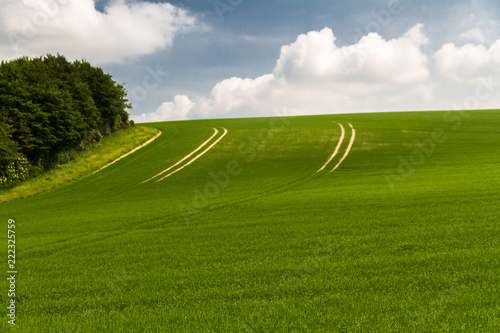 Tuinposter Platteland English countryside green fields.