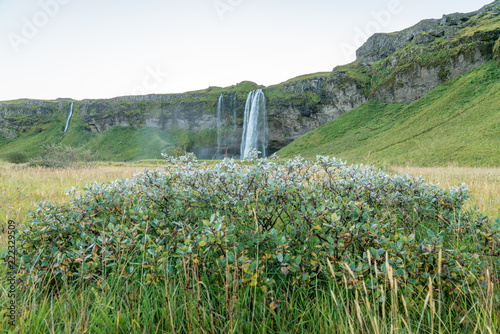 In de dag Pistache Icelandic landscapes in summer