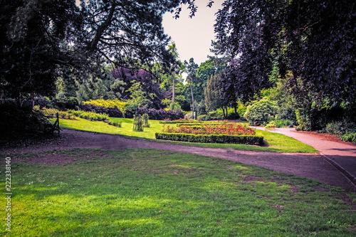 Foto op Aluminium Aubergine In the Park