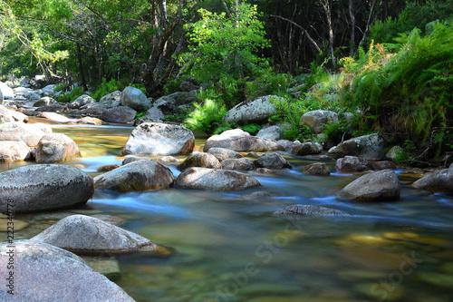 corse : rivière dans les gorges de spélunca Tableau sur Toile