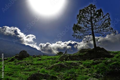 Fotografia  Plaine montagneuse à contre jour avec effet féerique