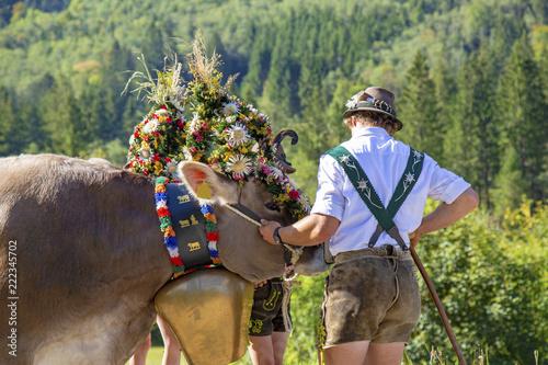 Kranzkuh - Allgäu - Viehscheid - Original - Tracht - urig