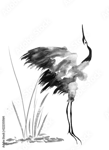Naklejki żurawie  japanese-crane-bird-drawing-watercolor-and-ink-illustration-in-style-sumi-e-u-sin-go-hua
