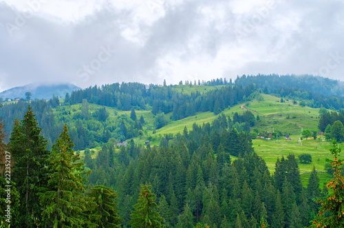 Foto auf Gartenposter Hugel view from above on houses and forest in the mountains, Carpathians Ukraine