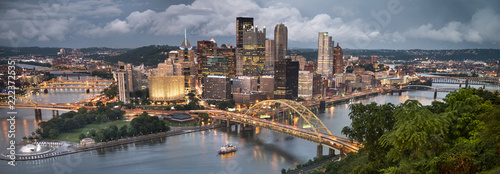 Pittsburgh city downtown skyline landscape view over the Monongahela and Alleghe Wallpaper Mural