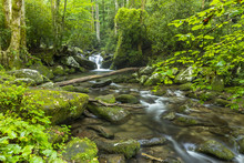 Roaring Fork - A Creek In The ...
