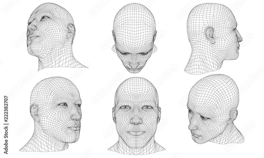 Fototapeta Set with a polygonal head of a man 3D