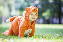 Cute Baby Girl Dressed In Fox Costume Crawling On Lawn In Park