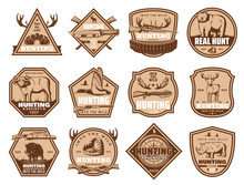 Wild Animals Vector Icons And ...