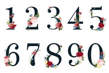 Botanical Numbers With Tropica...