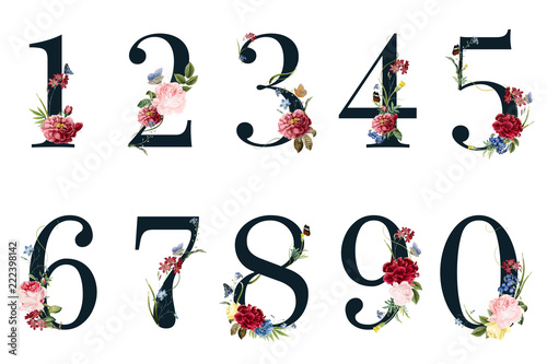 Cuadros en Lienzo Botanical numbers with tropical flowers illustration