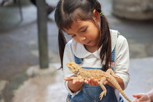Cute Asian Child Girl Holding ...