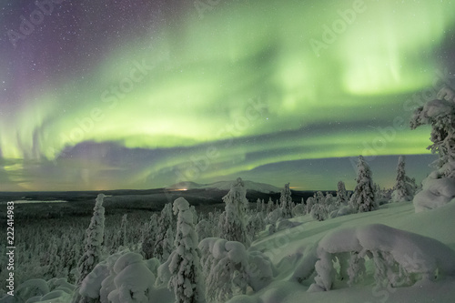 Poster Aurore polaire Colorful Northern lights (Aurora borealis) above snowy wilderness in Lapland