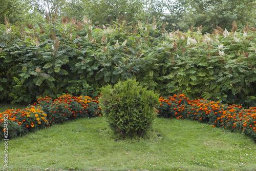 Papiers peints Jardin Landscaping of the park