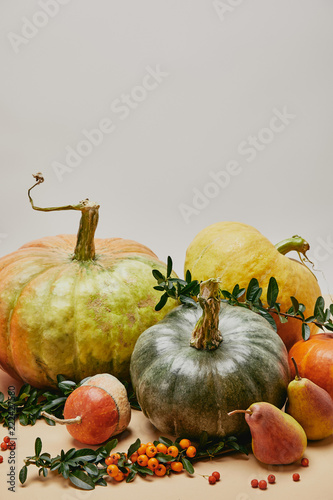 Aluminium Prints Autumn autumnal decoration with pumpkins, pears and firethorn berries on table
