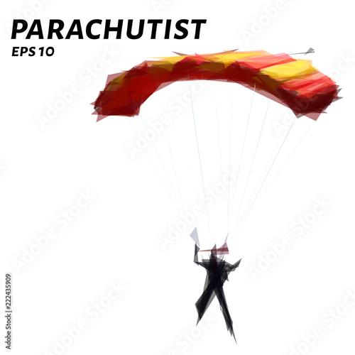 Fotografie, Obraz Parachutist from triangles