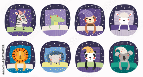 Montage in der Fensternische Abbildungen Set of cute funny sleeping animals in nightcap, with pillows, blankets. Isolated objects on white background. Hand drawn vector illustration. Scandinavian style flat design. Concept for children print