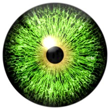 Halloween Isolated On White Green Eye, Eyeball Texture With Black Pupil