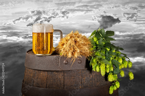 Poster Bier / Cider Still life with beer,hops and wheat
